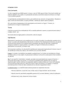 Ampullaria Canaliculata