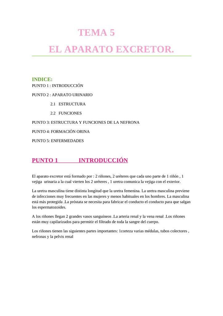 TEMA 5 EL APARATO EXCRETOR. INDICE:
