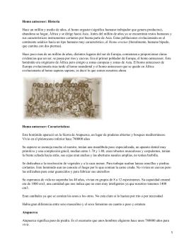 Atapuerca: Descripción del hallazgo arqueológico