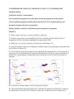 UNIVERSIDADES DE ANDALUCÍA. PRUEBA DE ACCESO A LA UNIVERSIDAD 2002 INSTRUCCIONES: