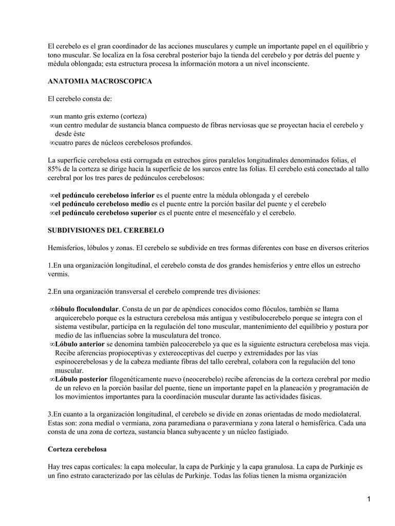 documento 9947