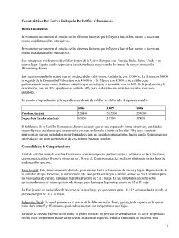Cultivo en España de coliflor y romanesco
