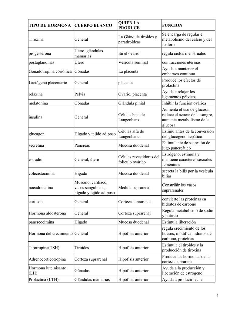 El metabolismo del cuerpo humano