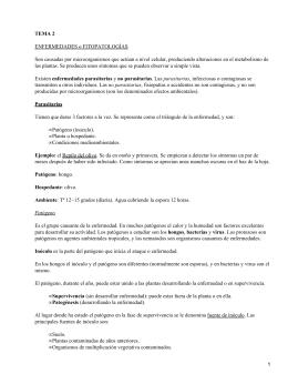 Enfermedades y fitopatologías