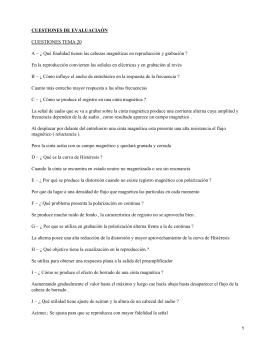 CUESTIONES DE EVALUACIAÓN CUESTIONES TEMA 20