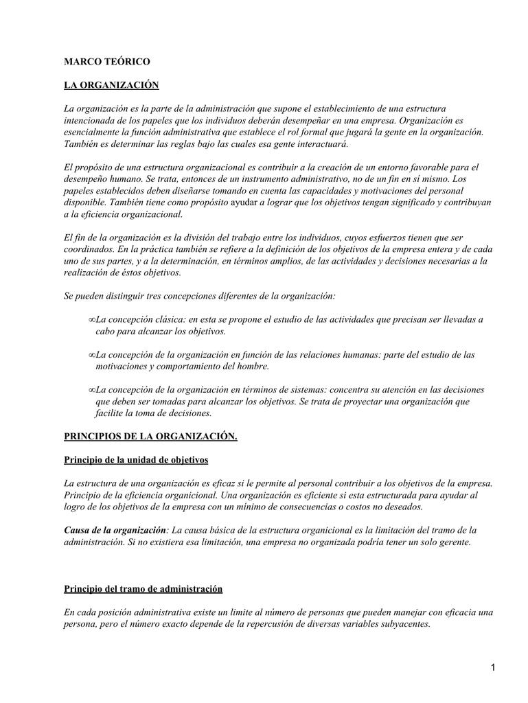 Marco Teórico La Organización