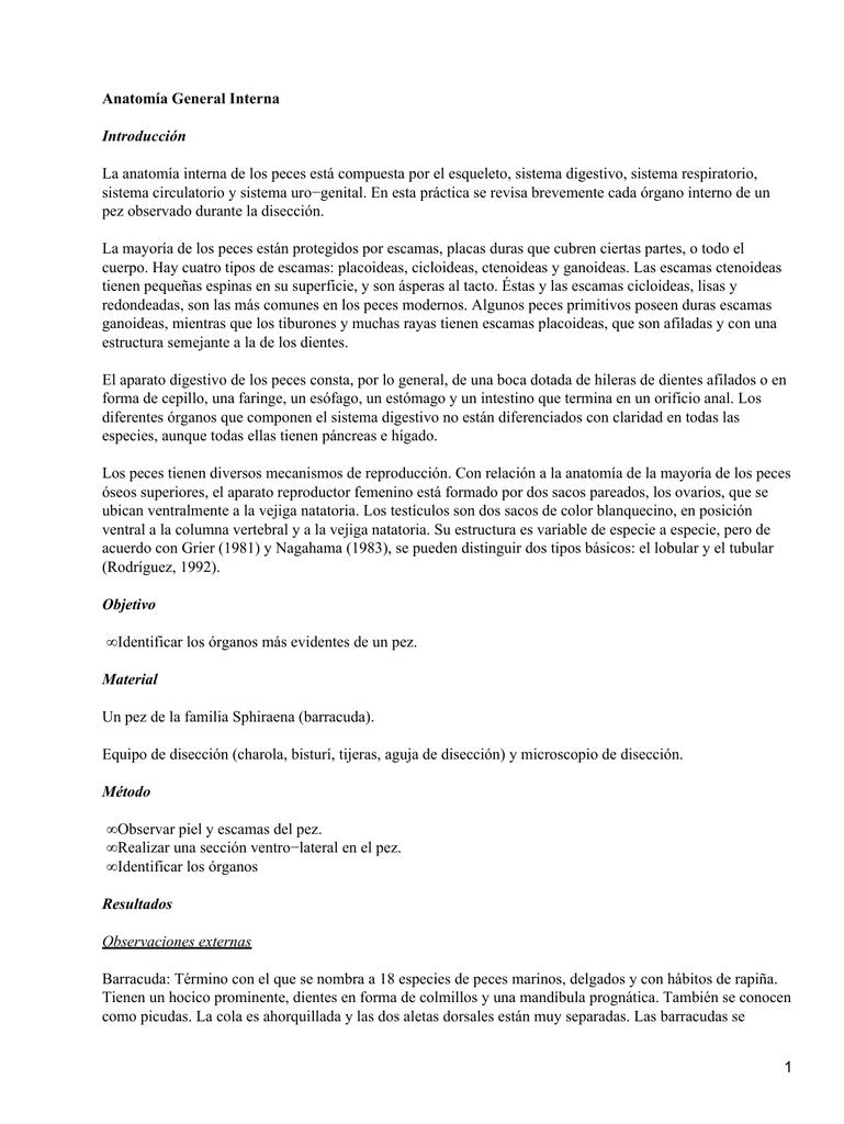 Anatomía General Interna Introducción