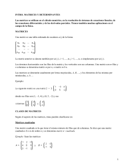 INTRO. MATRICES Y DETERMINANTES