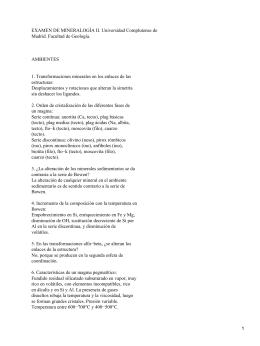 EXAMEN DE MINERALOGÍA II. Universidad Complutense de Madrid. Facultad de Geología. AMBIENTES
