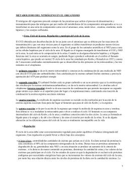 remedios para el acido urico en los pies pescados que elevan el acido urico metabolismo del acido urico bioquimica