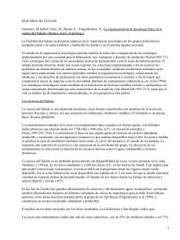 Organización de la Tecnología lítica en la cuenca del Salado