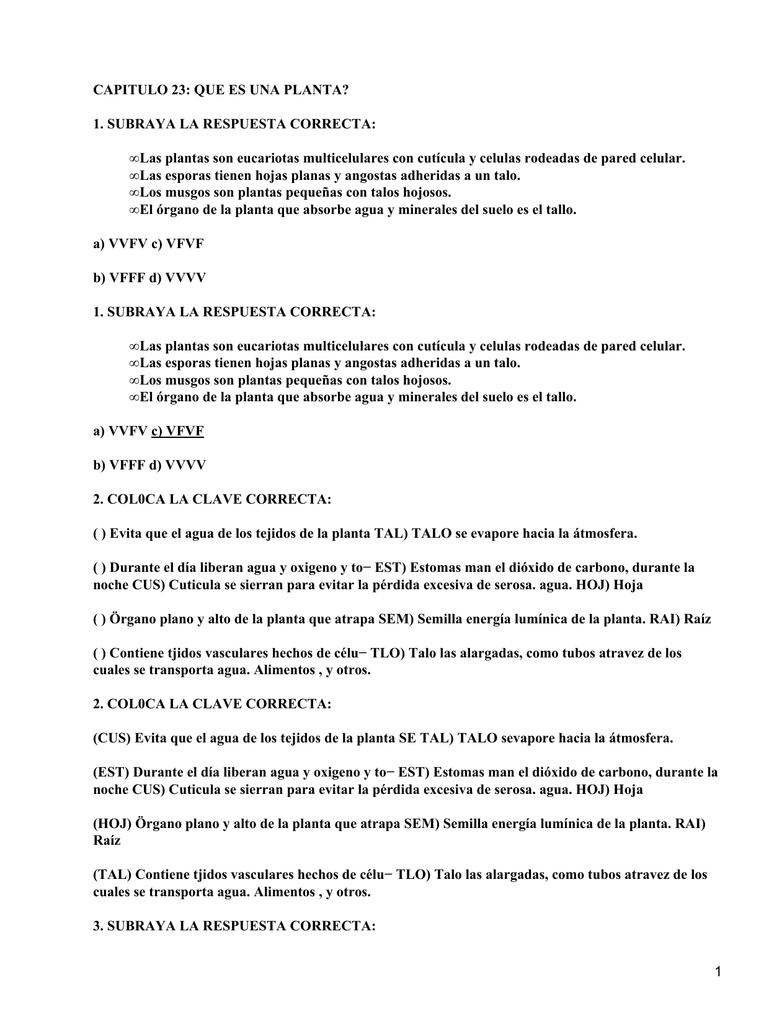 Lujoso Respuestas Hoja De Tejido Bandera - hojas de trabajo básicos ...
