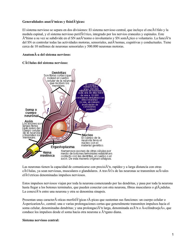 Perdida de peso involuntaria y heces finas y cortas celiacon
