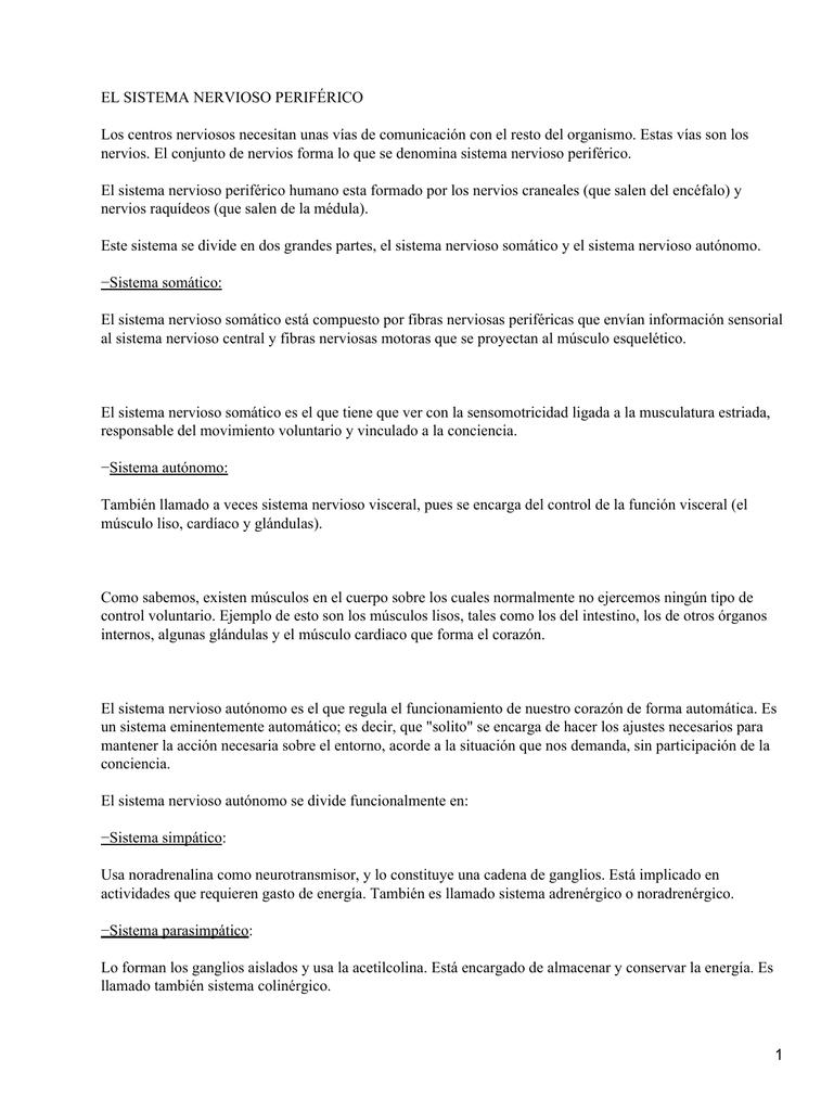 Lujoso Anatomía Y Fisiología Del Sistema Nervioso Hoja De Trabajo ...