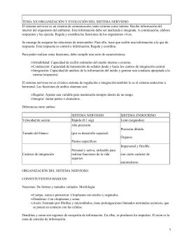 TEMA XX ORGANIZACIÓN Y EVOLUCIÓN DEL SISTEMA NERVIOSO