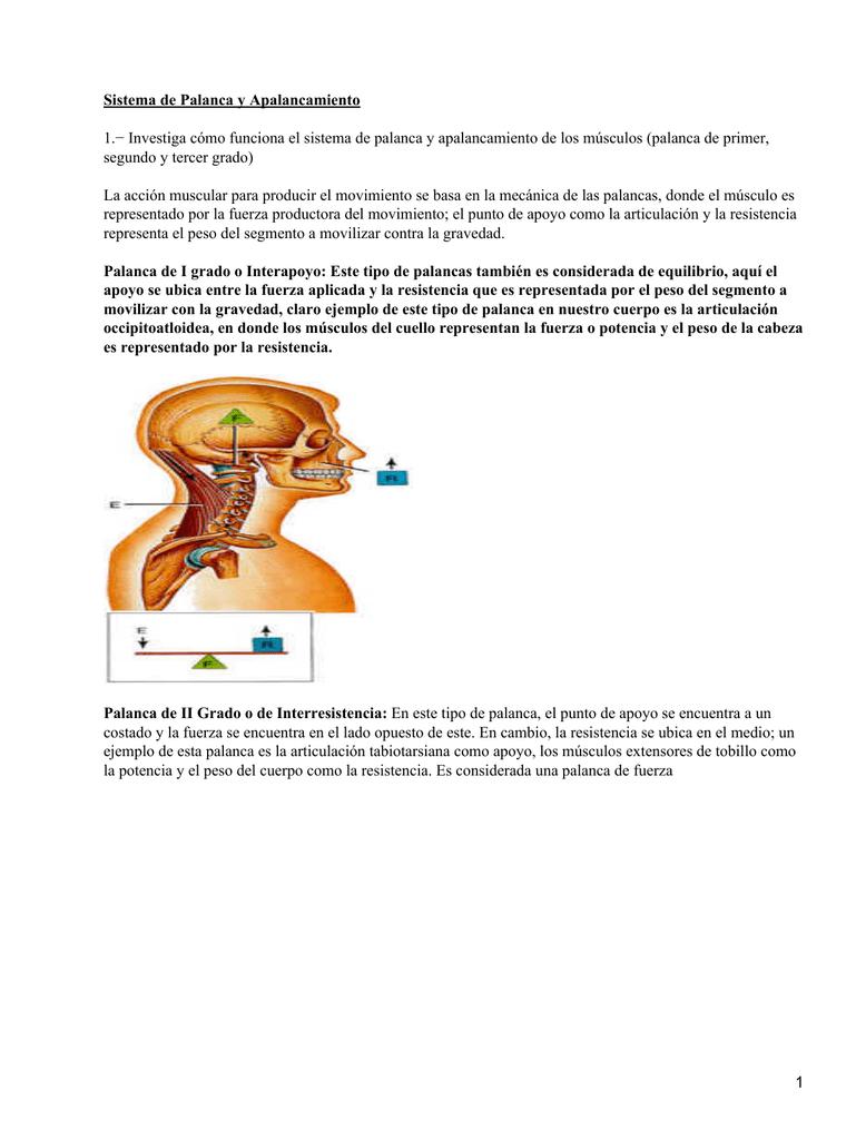 Sistemas de palanca y apalancamiento