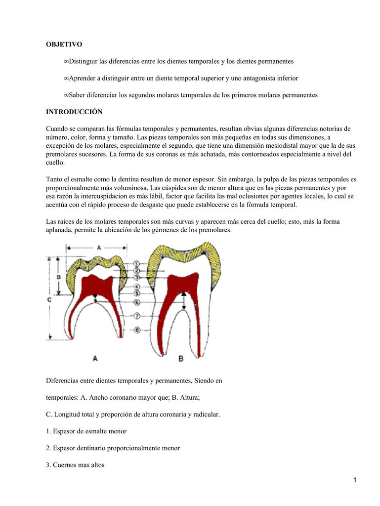 Tallado de dientes en cubos de cera