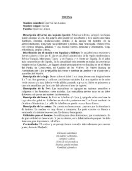 Cat logo bienes y servicios por partida intranet for Tecnicas gastronomicas pdf