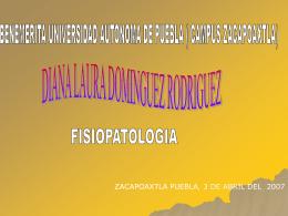 ZACAPOAXTLA PUEBLA, 3 DE ABRIL DEL  2007
