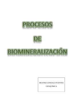 Procesos de biomineralización