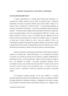 Vegetación centroamericana: características y problemática
