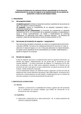 Términos de Referencia de asistencia técnica especializada en el marco... implementación de un plan de negocio en la implementación de...