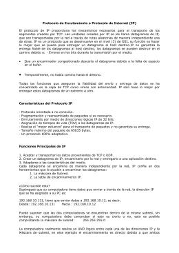 Protocolo de Enrutamiento o Protocolo de Internet (IP)