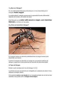 El documento difundido por Red Solidaria para prevenir el dengue.