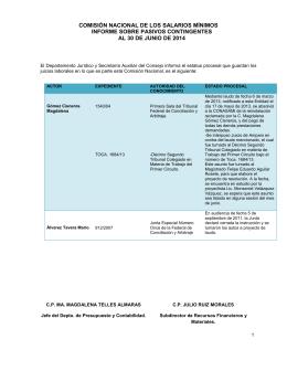 Microsoft Word - Informe sobre Pasivos Contingentes