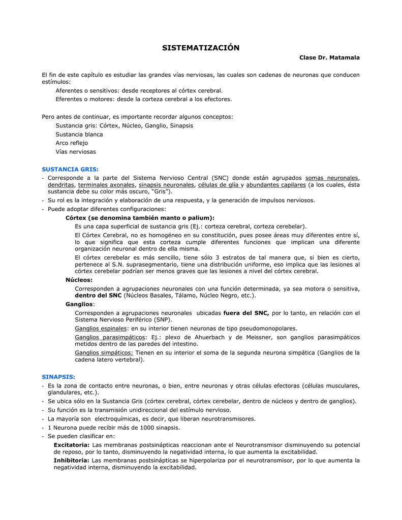 "13 SISTEMATIZACIÃ""N"