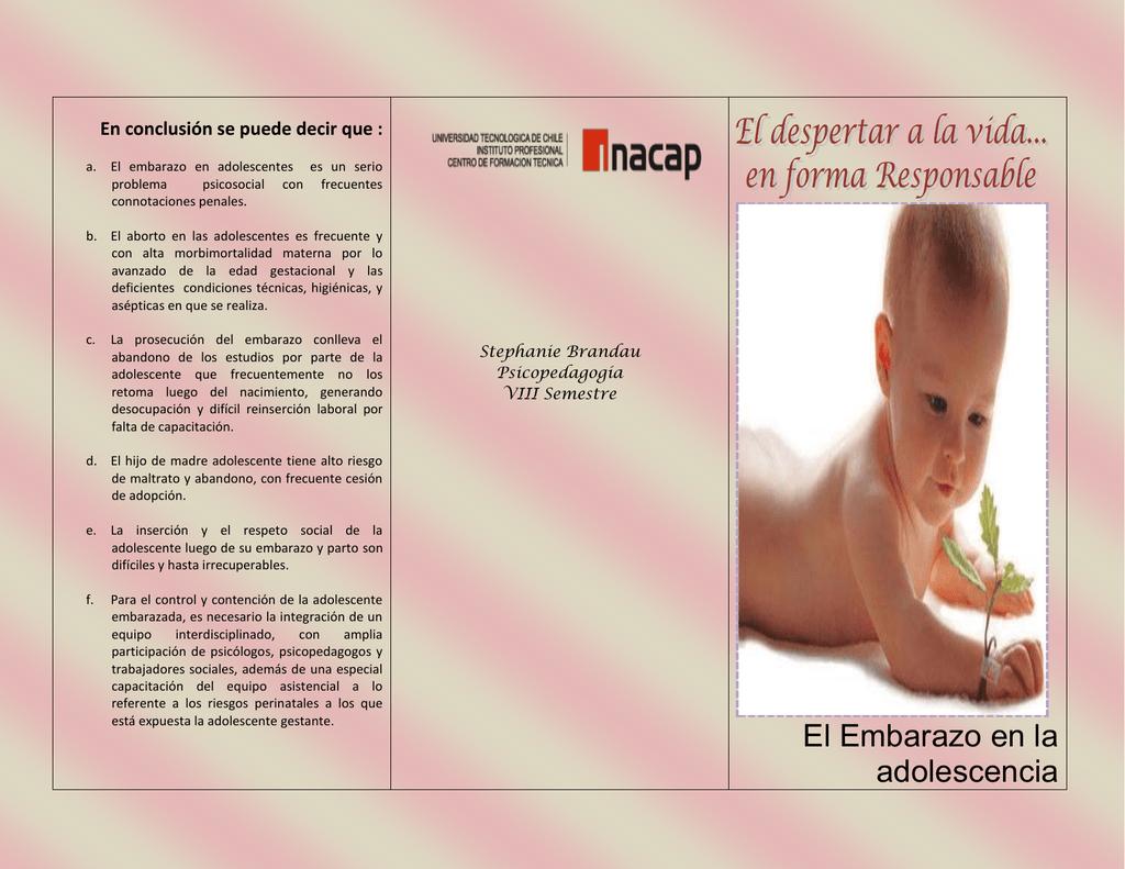 Porotos negros: Un tesoro de antioxidantes