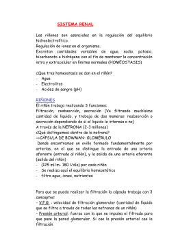 SISTEMA RENAL - Enfermería 21
