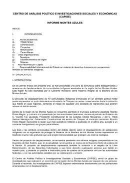 CENTRO DE ANÁLISIS POLÍTICO E INVESTIGACIONES SOCIALES Y ECONÓMICAS (CAPISE)