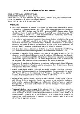 MICROSCOPÍA ELECTRÓNICA DE BARRIDO  CURSO DE POSTGRADO NO ESTRUCTURADO