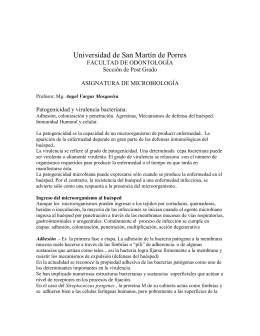 Agresinas - Universidad Norbert Wiener