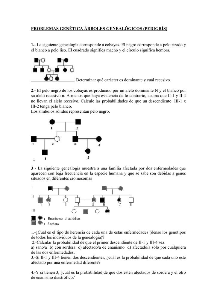 Problemas Genética árboles Genealógicos Pedigrís