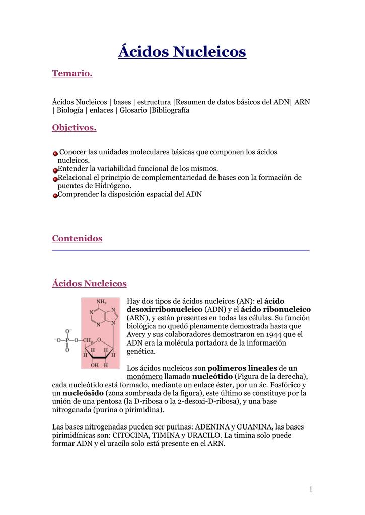 ácidos Nucleicos Temario Objetivos