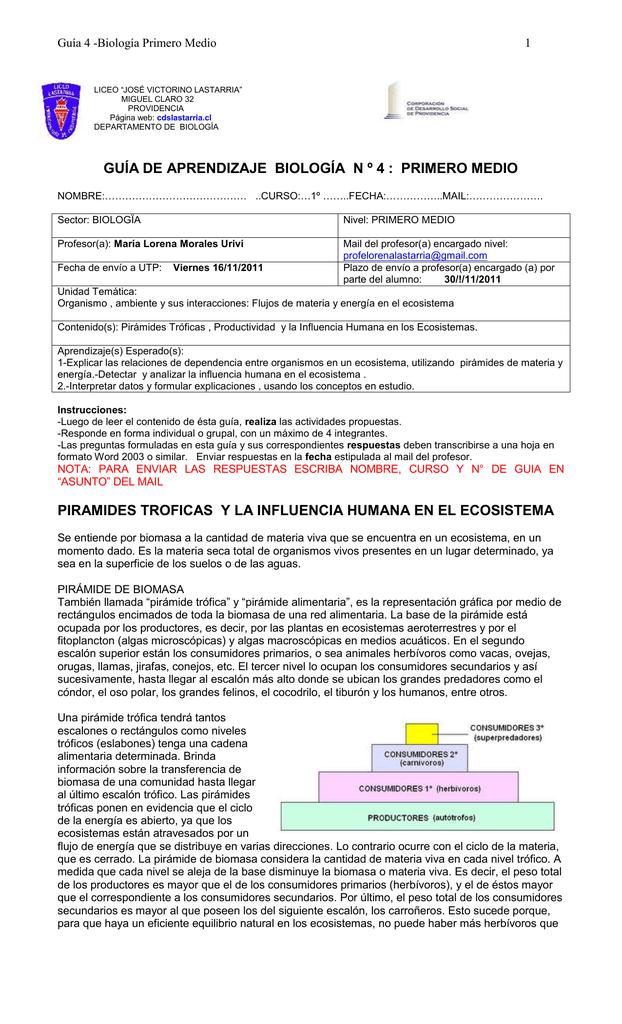 GUIA Nº 4_BIOLOGIA_1º MEDIO_LJVL