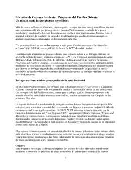 Iniciativa de Captura Incidental: Programa del Pacífico