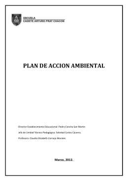 Plan de Accion ambiental 2012