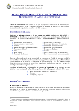 2_-_Areas de oportunidad