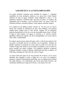CHURRIANA VIRGEN DE LA CABEZA texto 4º
