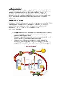 Combustibles - elmundodelautomovil