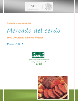Mercado del cerdo  Enero  / 2013 Síntesis informativa del