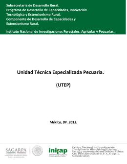 ESTRATEGIA-UTEP-2013-1 - Instituto Nacional de