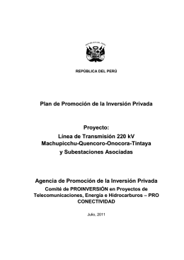 plan de promocion de la inversion privada