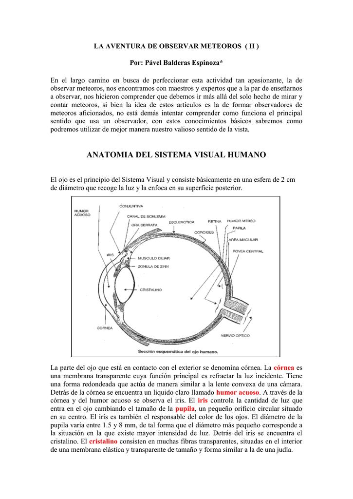LA AVENTURA DE OBSERVAR METEOROS ( II )