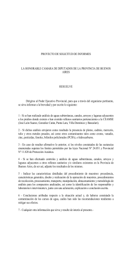 fundamentos - Honorable Cámara de diputados de la Provincia de