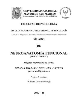 NEUROANATOMÍA FUNCIONAL SÍLABO  DE