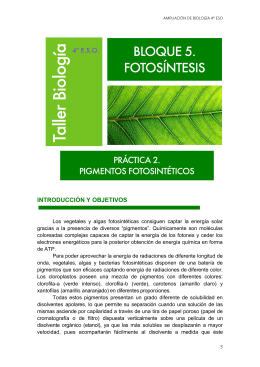 4_ESO_AMPL-Practicas_3_files/FOTOSINTESIS 2